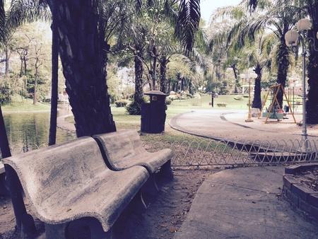 sedia vuota: Sedia vuota nel vecchio parco Archivio Fotografico