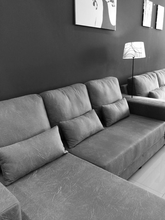 pillows: The furniture in Living room