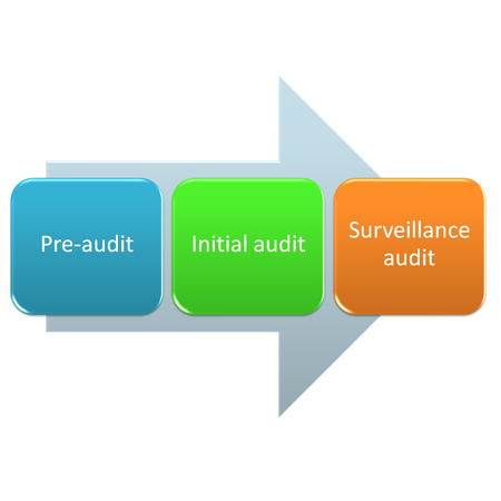 auditor: Audit process timeline