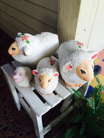 doll: Sheep doll