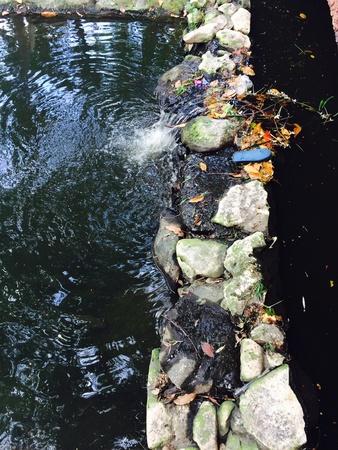 waste water: Waste water