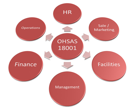 assessment system: The graph shows the relationship of the OHSAS1800. Stock Photo