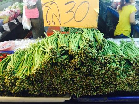 ejotes: jud�as verdes vegetales Foto de archivo