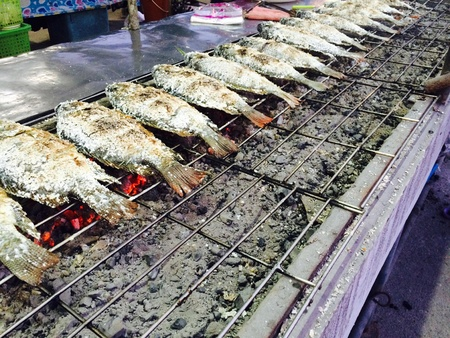 net: Grilled Fish