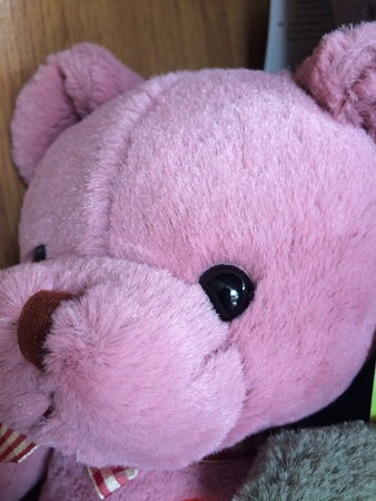 doll: Teddy Bear
