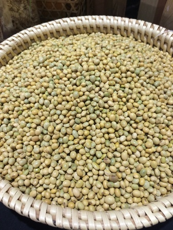 seed: Bean seed