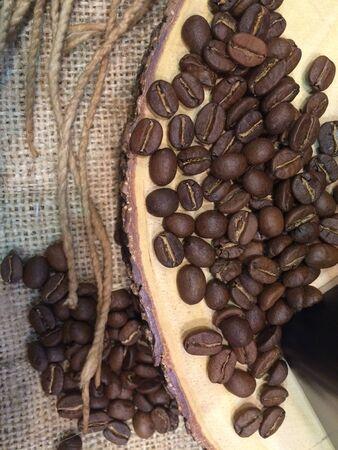 seed: Coffee seed