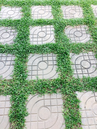 tile: Grass interspersed with brick tile pattern Stock Photo