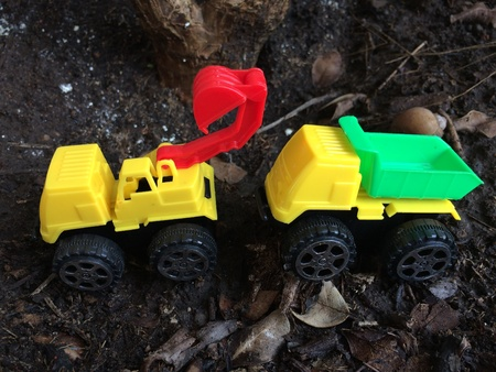truck driver: Toy truck in the garden