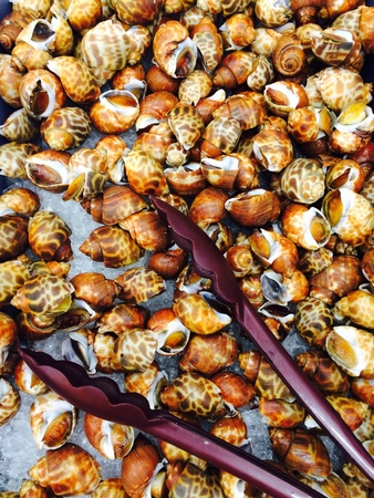 ailment: fresh raw shellfish Stock Photo