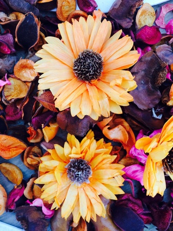 Colorful dried flowers to make fragrance.