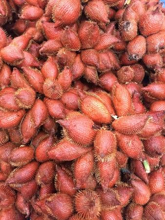 겨울 푸른 과일
