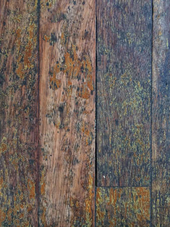 rough: vintage and retro wood texture pattern background