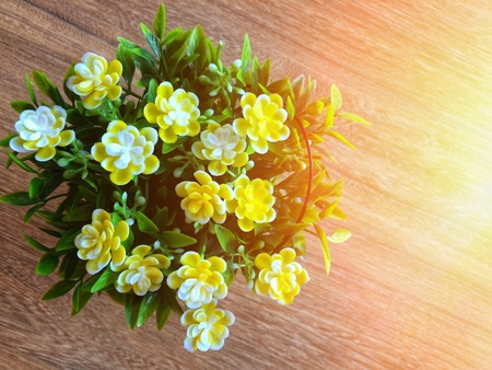 close up top view of flower vase in casual with sunshine day