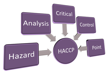 Introduction to  HACCP standard, haccp is hazard analysis critical control point Stock Photo
