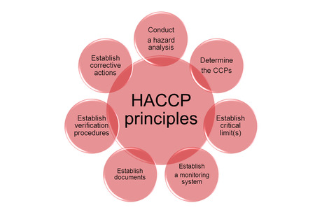The 7 principles of HACCP