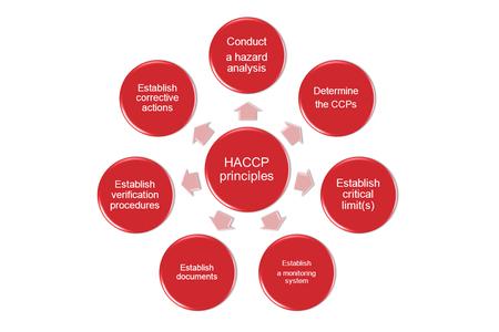 The 7 principles of HACCP