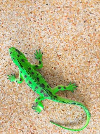 counterfeit Iguana, kid toy concept