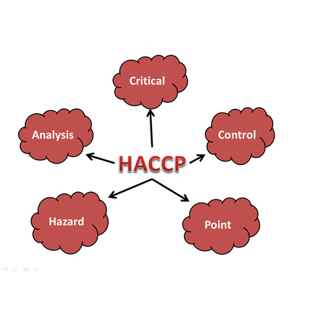 meaning of haccp abstract Archivio Fotografico