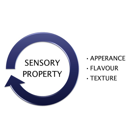 picture diagram of SENSORY PROPERTY, manufacturing and business concept