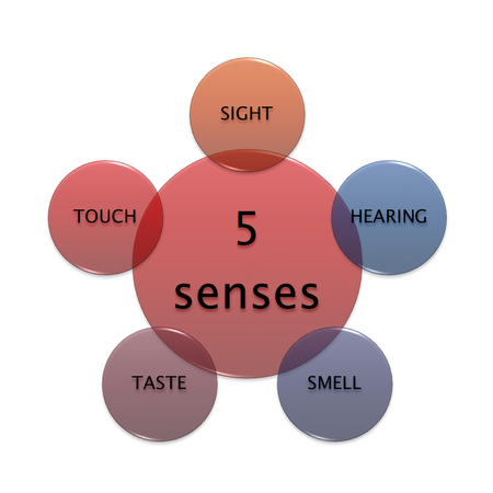 picture diagram of 5 senses, manufacturing and business concept
