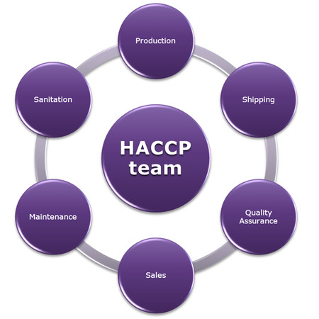 HACCP team, People chosen that have expertise in different areas, important to have people with different backgrounds on our HACCP team Фото со стока