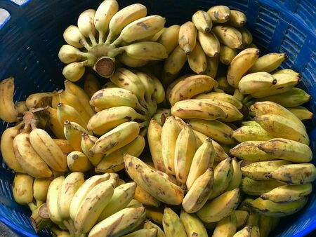 ripe banana on blue basket prepare for sold in the fruit and vegetable market