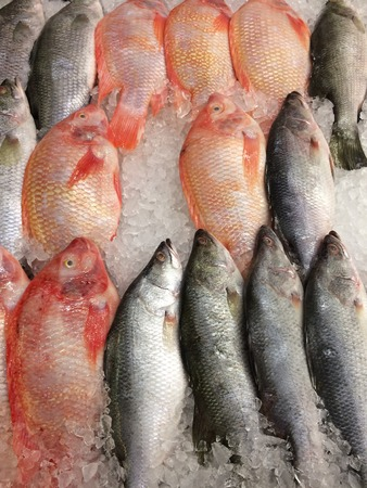 raw fresh fish texture pattern background sell in the market