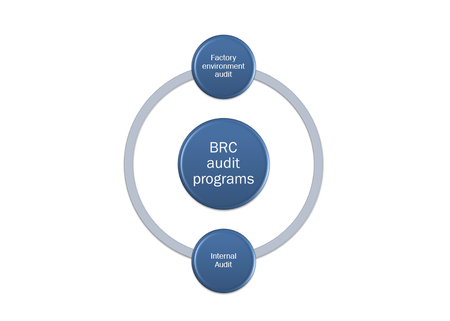 picture diagram of  BRC audit programs system Stock Photo