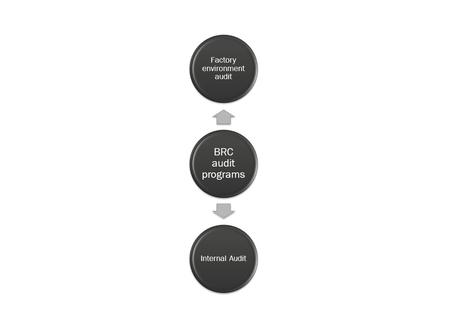 picture diagram of  BRC audit programs system Archivio Fotografico
