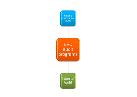 picture diagram of  BRC audit programs system Imagens