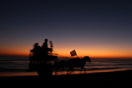 horse cart: Horse cart running in sunset Stock Photo