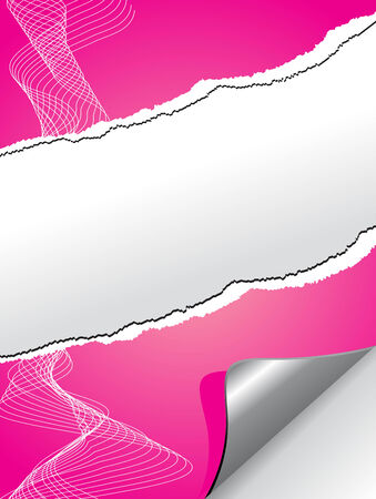 Very realistic tear Pink paper. Vector. Vector