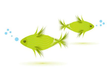 fish isolated on white, illustration Illustration