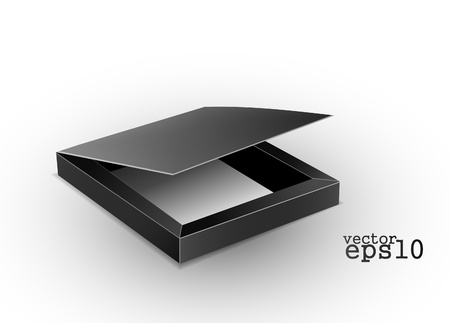 stylish hi quality opened case with black interior isolated over white  Vector