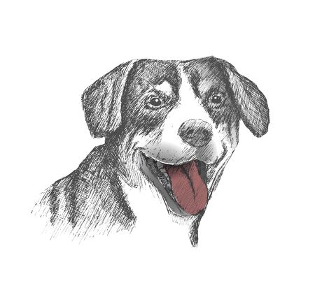 Face of dog hand drawn Sketch on white background Illustration