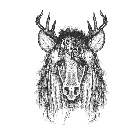 Psychedelic hand-drawn sketch Illustration of Horse face with deer horns.