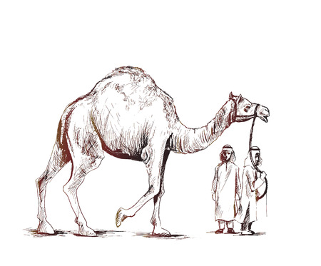 Arab man standing with a camel Hand Drawn Sketch