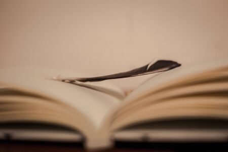 Blurred feather on lecture note book opening show empty page on wood table 版權商用圖片