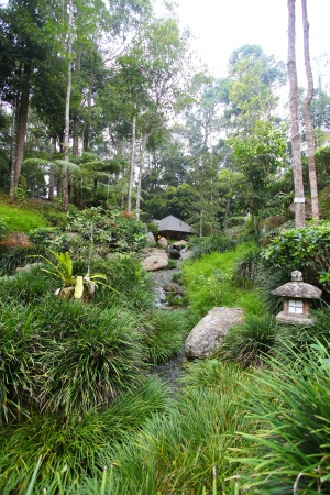 bukit: The Botanical Gardens set in the midst of lush tropical rainforests of Bukit Tinggi Stock Photo