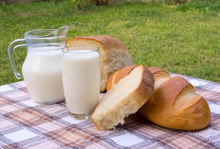 milk and bread on table in garden photo