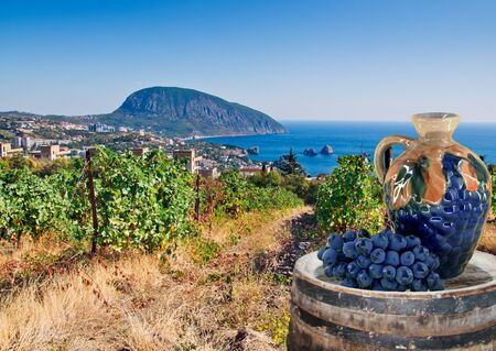 vineyard and villages in coast Stock Photo
