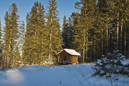 wooden pavilion in winter forest photo