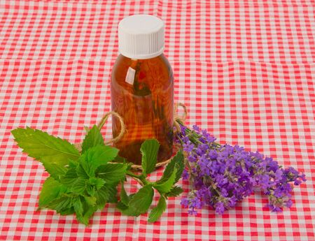 lavender and spearmint with bottle on checkered tablecloth photo
