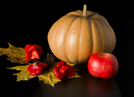 pumpkin and apple with autumn leaves on dark background photo