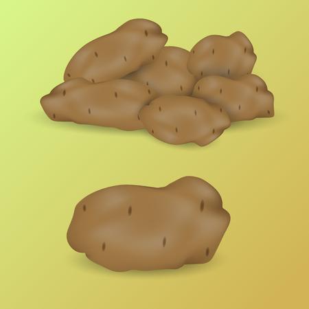 potatoes: vector image potatoes on green