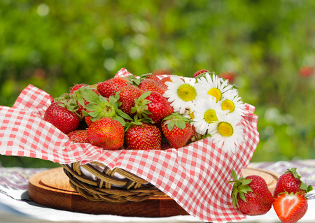 Strawberries in basket  with camomile flowers on bokeh background Stock Photo