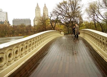 ニューヨーク - 中央公園弓橋