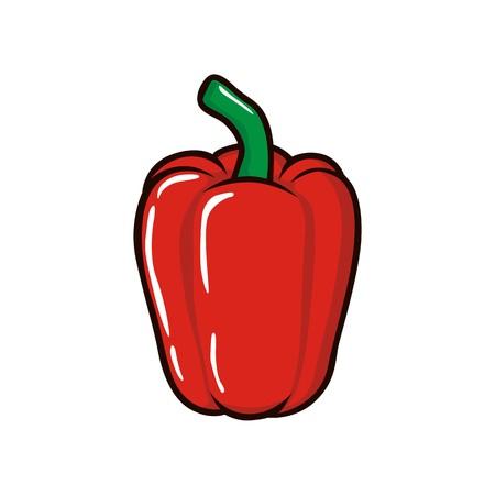 paprika: Red paprika illustration vector