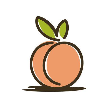 Peach illustration vector